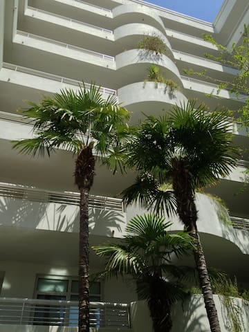 View inside the lobby area. Open air with real palm trees inside!