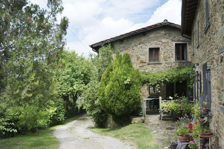 """""""Il vecchio appartamento"""" breathe Tuscan history - Vicchio - Flat"""