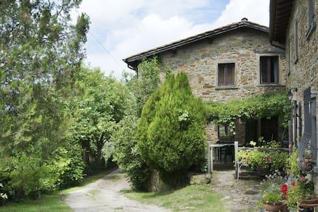 """""""Il vecchio appartamento"""" breathe Tuscan history - Vicchio"""