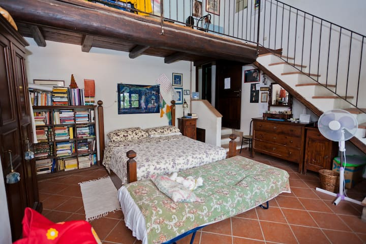 Accommodation Room City View  - Todi - House