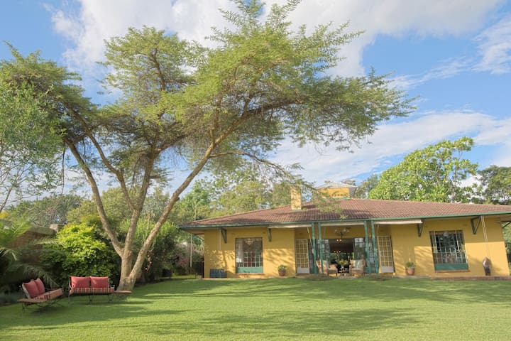 Jacana Gardens Guest Lodge - Harare - Bed & Breakfast
