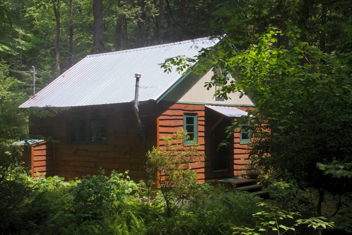 Streamside charming vintage cabin in the woods