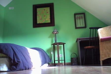 Chambre hyper centre dans maison - Rennes - Bed & Breakfast