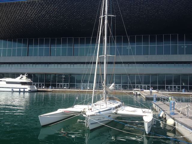 TRIMARAN DRAGONFLY 5 PLACES FREE PARK 2MT AWAY