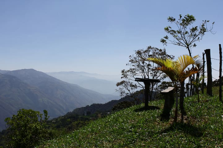 Beautiful Coffee Farm with Spectacular Views - Antioquia - House