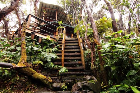 Treehouse at Kilauea Volcano - Volcano