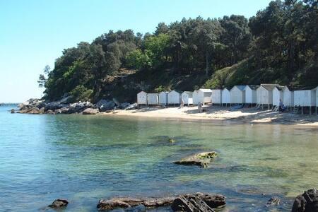 La plage à l'ombre des chênes verts - Noirmoutier-en-l'Île
