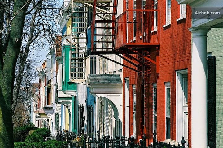 Located amongst the brightly-colored rowhouses of Geneva's Historic District.