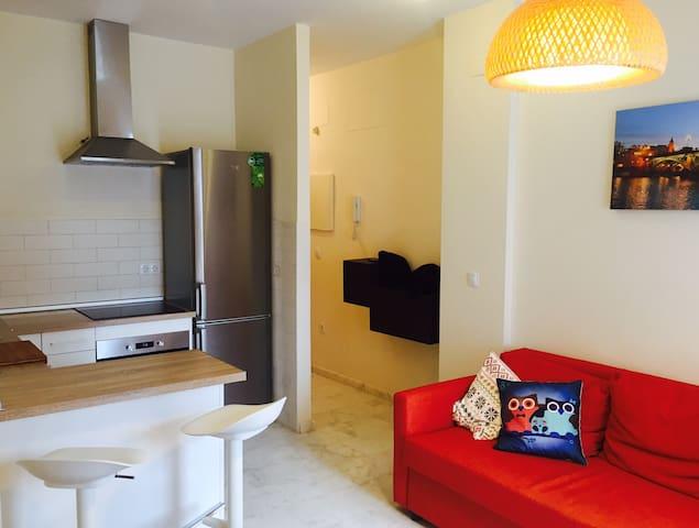 Casa Pinta / Pinta House - Seville - Hus