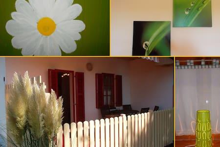 """Apartment Marjetica 32 """"Daisy 32"""" Moravske Toplice - Moravske Toplice - Lejlighed"""