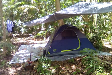 Tropical forest Camping @campingbarbados.  Tent 1