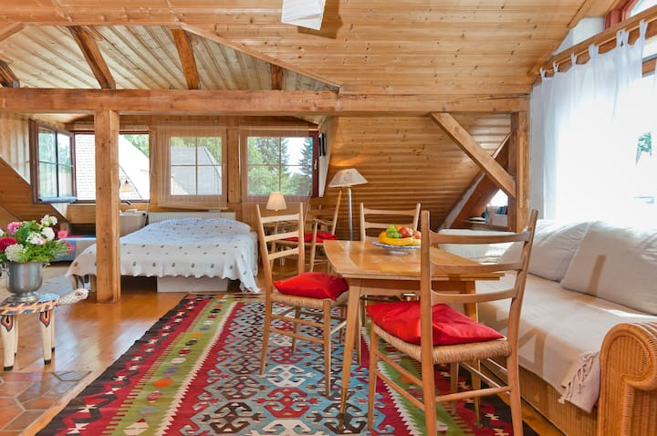 helle ruhige Dachgeschosswohnung