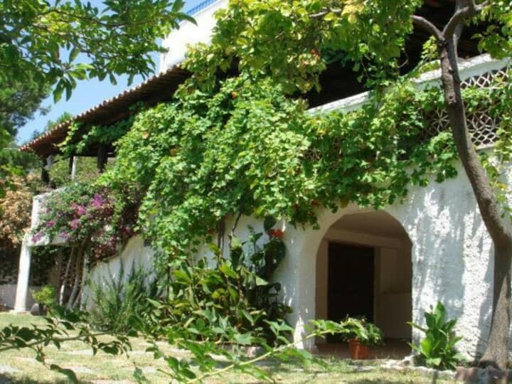 villa Lopez,giardino tropicale,San Lucido,Calabria