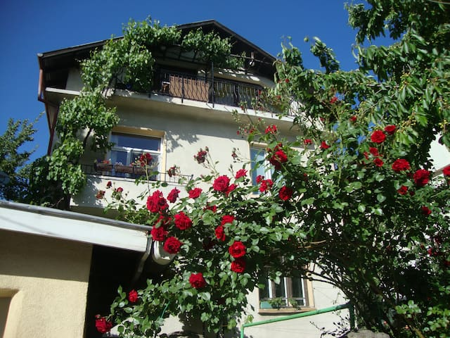 House with garden in Sofia's center