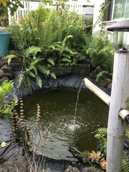 Fish Pond once you walk down driveway.  FREE street parking