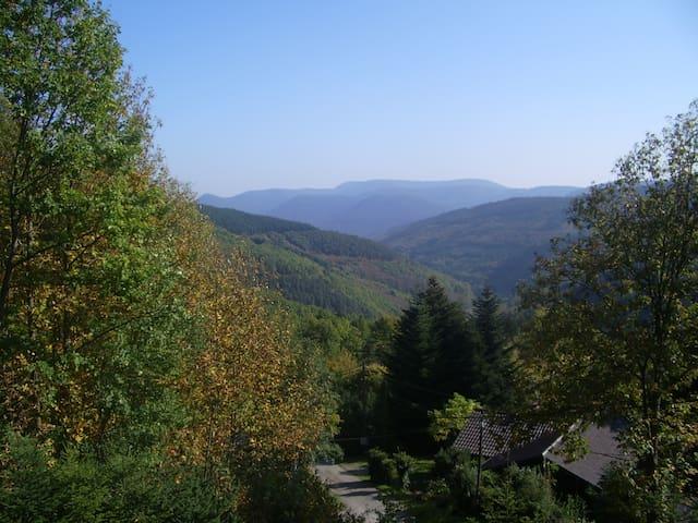 Chalet dans les Vosges à 600 m - Lalaye