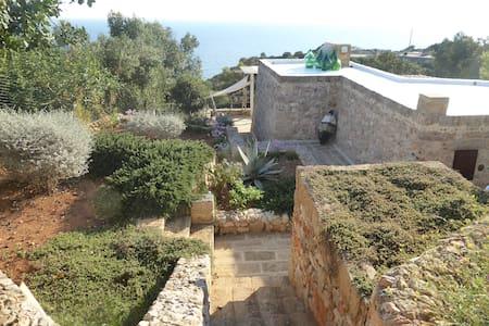 LA TORRE DI MERLINO - San Gregorio - 別荘