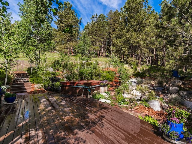 Mountain Retreat in Evergreen on 20 Acres - Evergreen - House