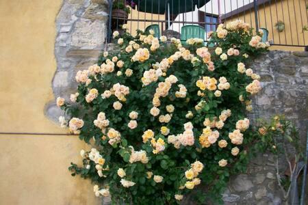 Casa Lisetta - Valtopina - Bed & Breakfast