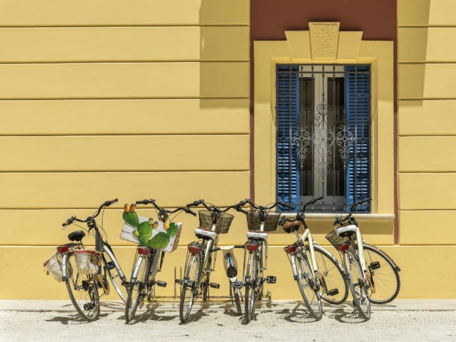 Affitto bici