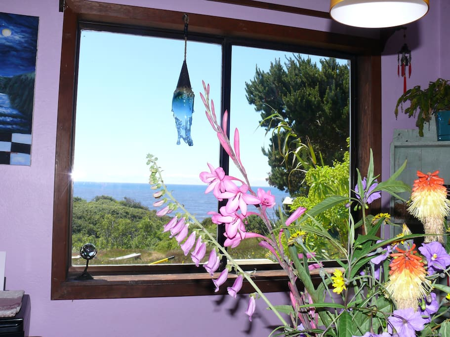 view from dining nook, flowers from yard