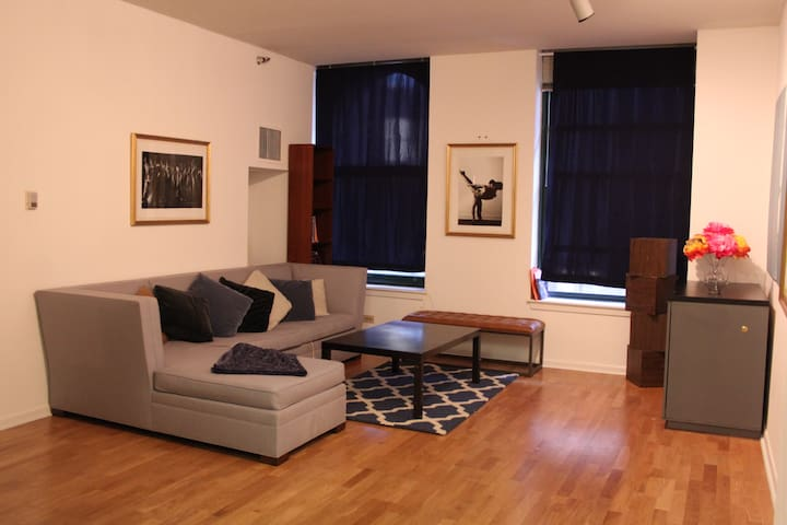 Spacious, Central 1BR Downtown - Chicago - Pis