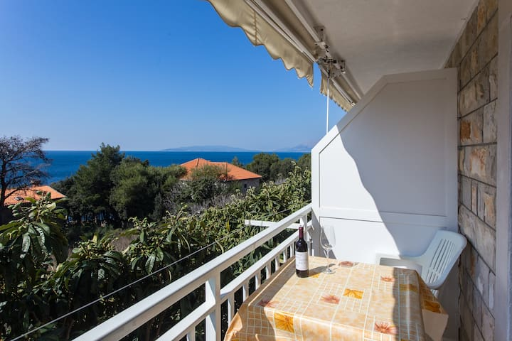 Villa Ana - One Bedroom with Balcony & Sea View 1 - Potomje - Appartement