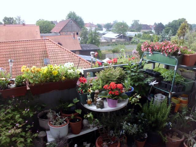zu besuch bei lessing&jägermeister - Wolfenbüttel - Appartement