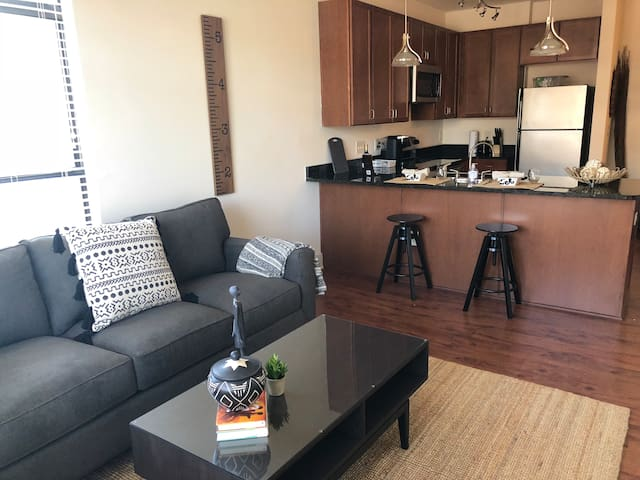 CONVENIENT SOUTH END 1BR APT NEXT TO LIGHT RAIL