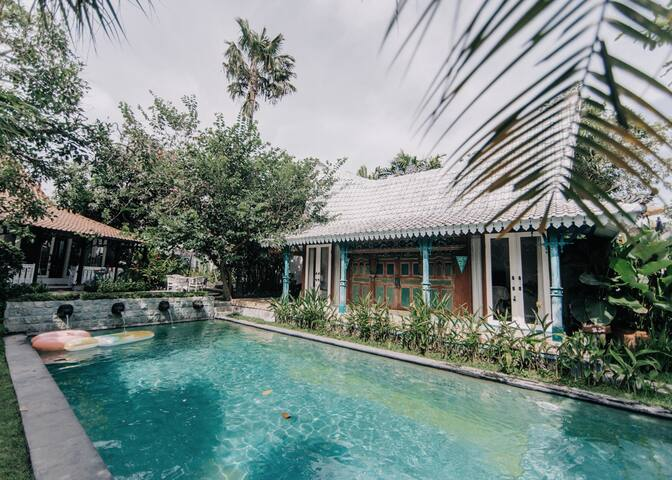 The Snug - Luxe Antique 1BR Pool Suite, Full Staff