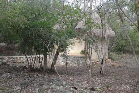 cenotes and relaxation with package experience