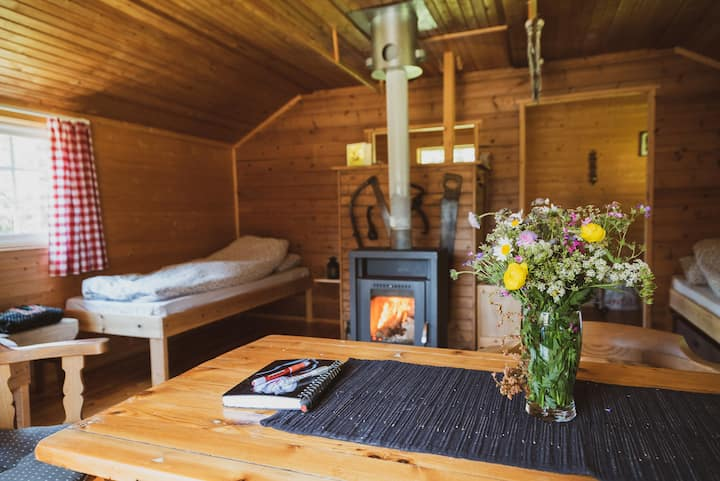 Homely log cabin  in mighty woods - simple living