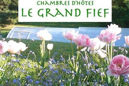Chambres d'hôtes LE GRAND FIEF Ch 1 - Chantonnay - Bed & Breakfast