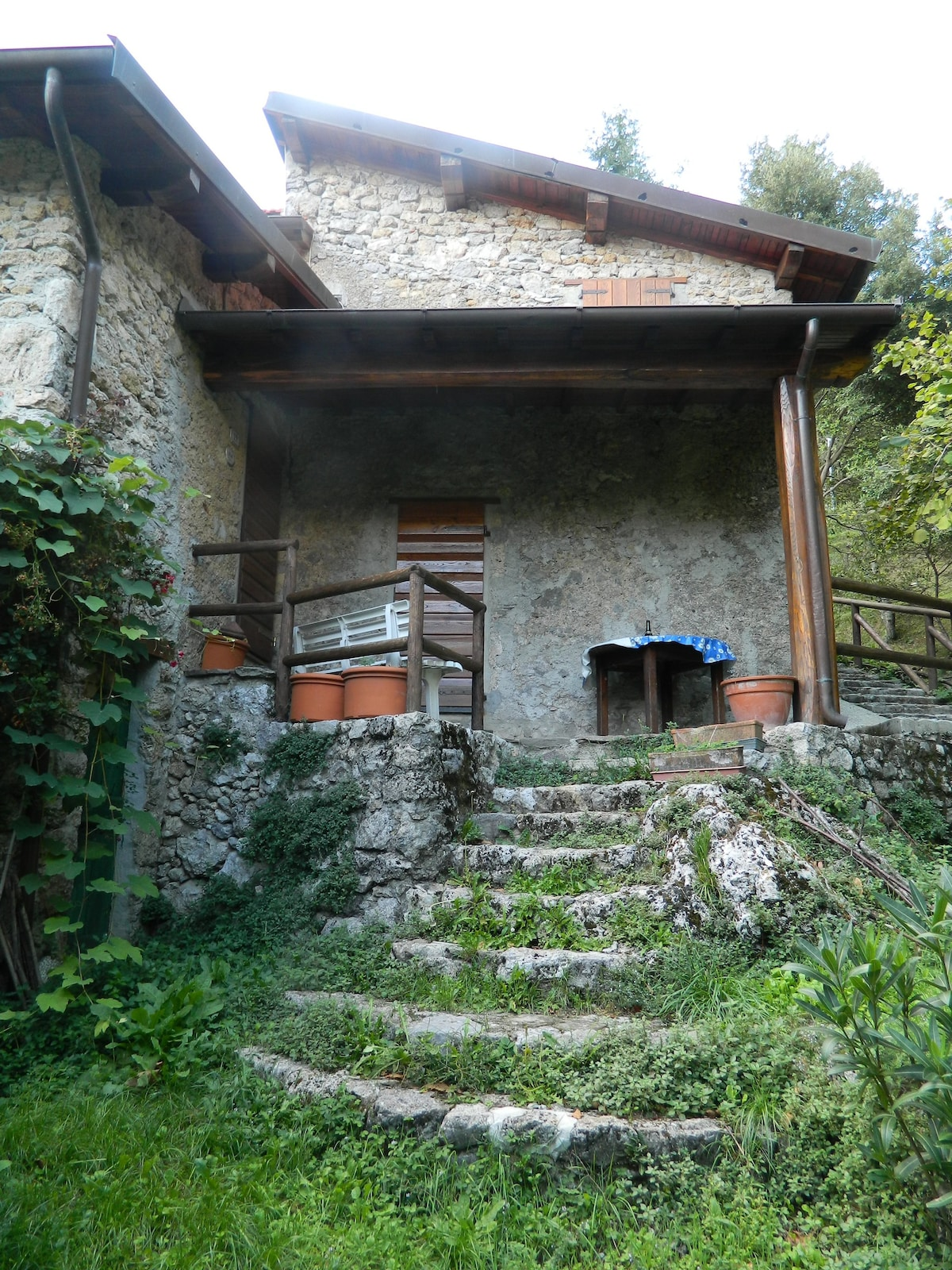 Buy cheap bungalows in Camaiore