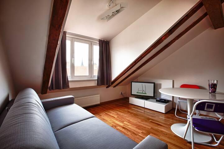 Cozy and bright- Arneis - Prag - Daire