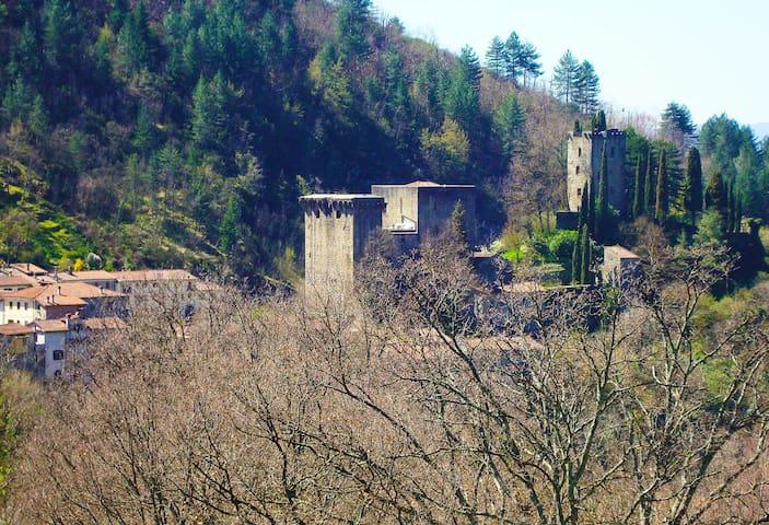 La Romantica Torre di Dante   - Verrucola