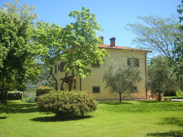 VILLA IN TUSCANY / SWIMMING POOL/  - Arezzo