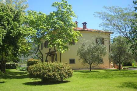 VILLA IN TUSCANY / SWIMMING POOL/  - Arezzo
