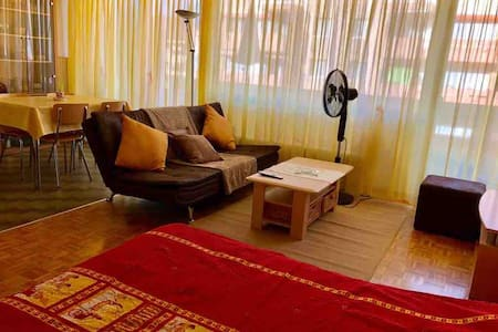 Big studio furnished in Monthey