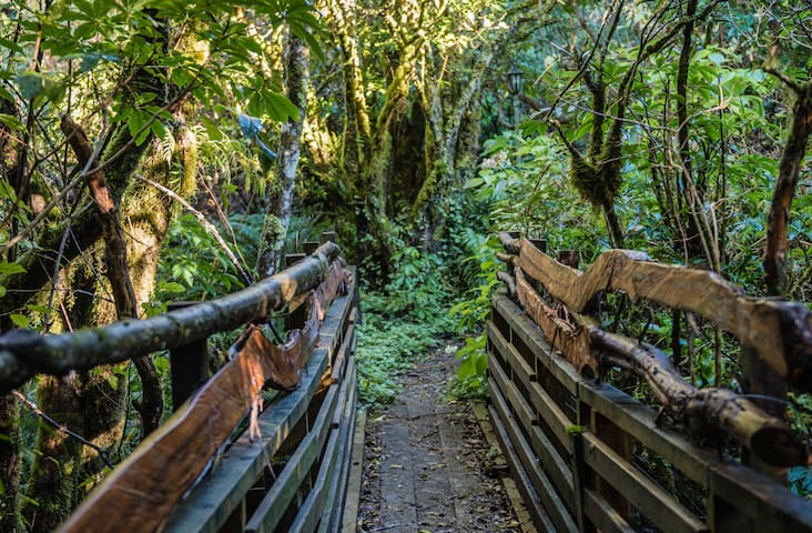 Listen to the sound of the fresh mountain stream, as you cross this pretty wooden bridge on your way to the house
