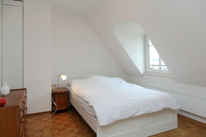 Attic apartment in central Geneva - Geneva - Apartemen