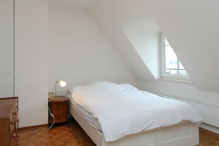 Attic apartment in central Geneva - Ženeva - Byt