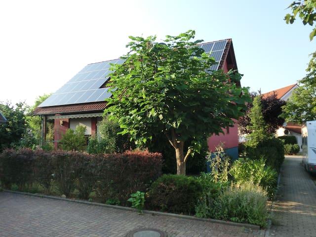 Ferienwohnung am Oberrhein, im Herzen Badens - Rheinmünster - Apartment