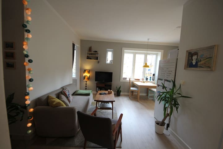 Cozy apartment in Oslo - Oslo - Apartment