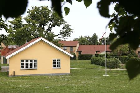 Dejlig lille rækkehus , lille have