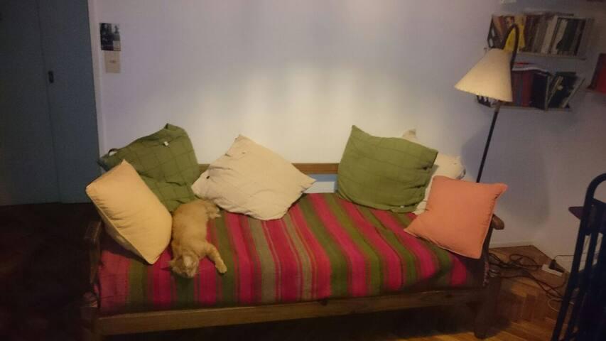 Sofá cama (el gato no estará en el departamento)