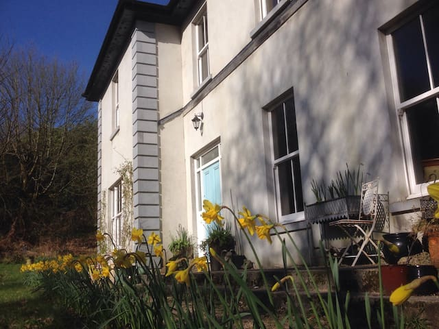 Serene woodland country retreat - Abbeyleix  - House