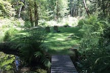 Past the duck pond is the lower lawn and babbling creek. Nice place to sit.