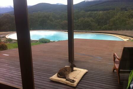 Views to die for - Kangaroo Room