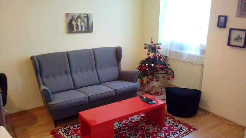 Cute apartment walking distance from city center
